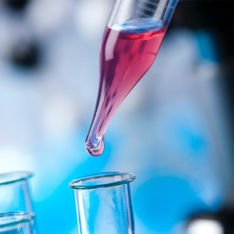 Press Wizards biotech web design portfolio